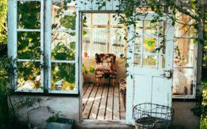 植物と玄関