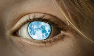 地球を眺めている