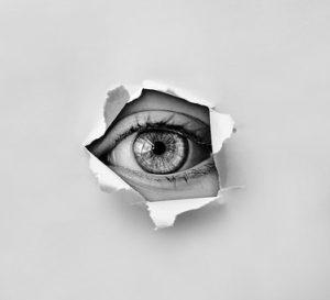 人間の目②